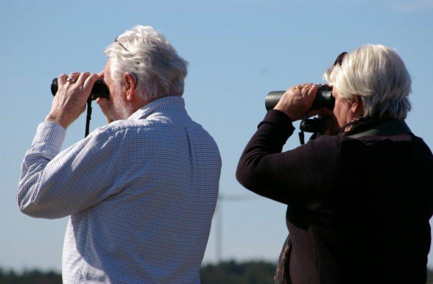 Best 12x50 Binoculars