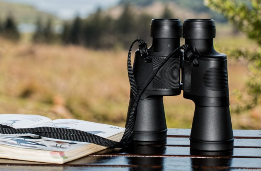 best lightweight binoculars for birdwatching