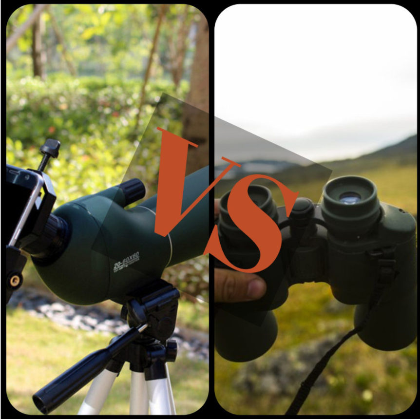 Binoculars or spotting scope for bird watching