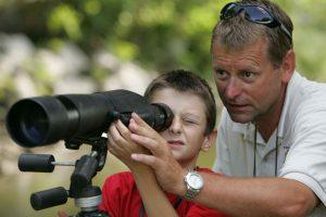 binoculars vs spotting scope