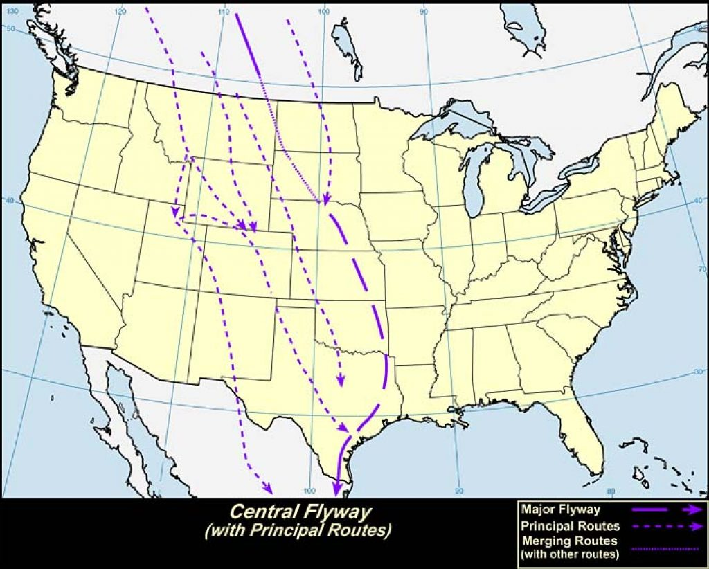 Central Flyway (U.S.A.)-USGS photo