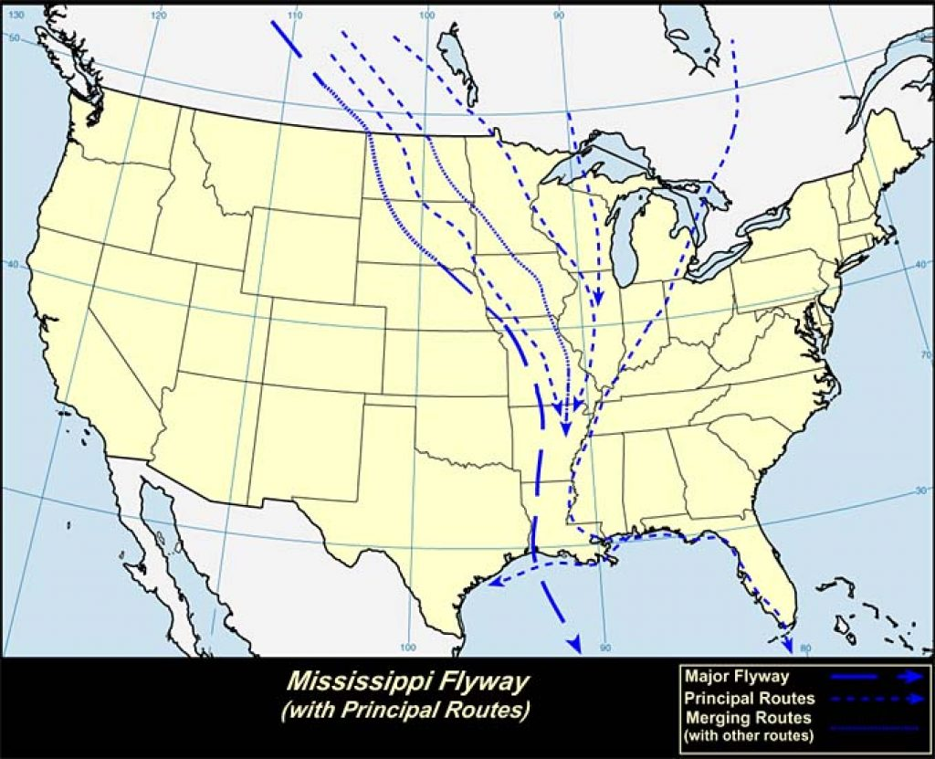Mississippi Flyway (U.S.A)- USGS photo